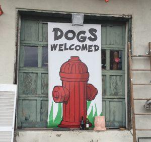 Dog Friendly Hotels Asheville