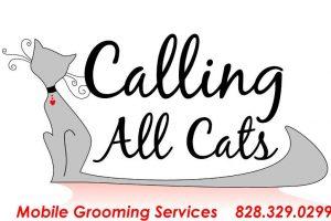 Cat Groomer Asheville Arden NC