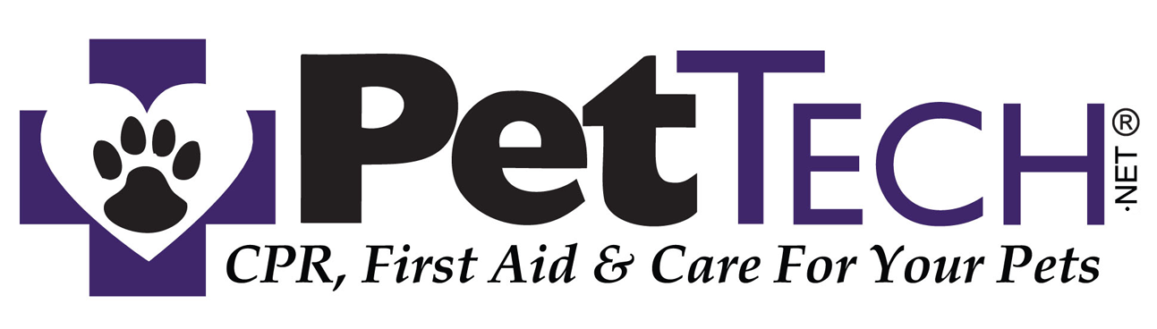 Pet First Aid And Cpr Training Meow Cat Sitting Asheville Nc