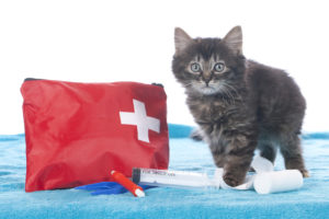Cat Friendly First Aid Kit