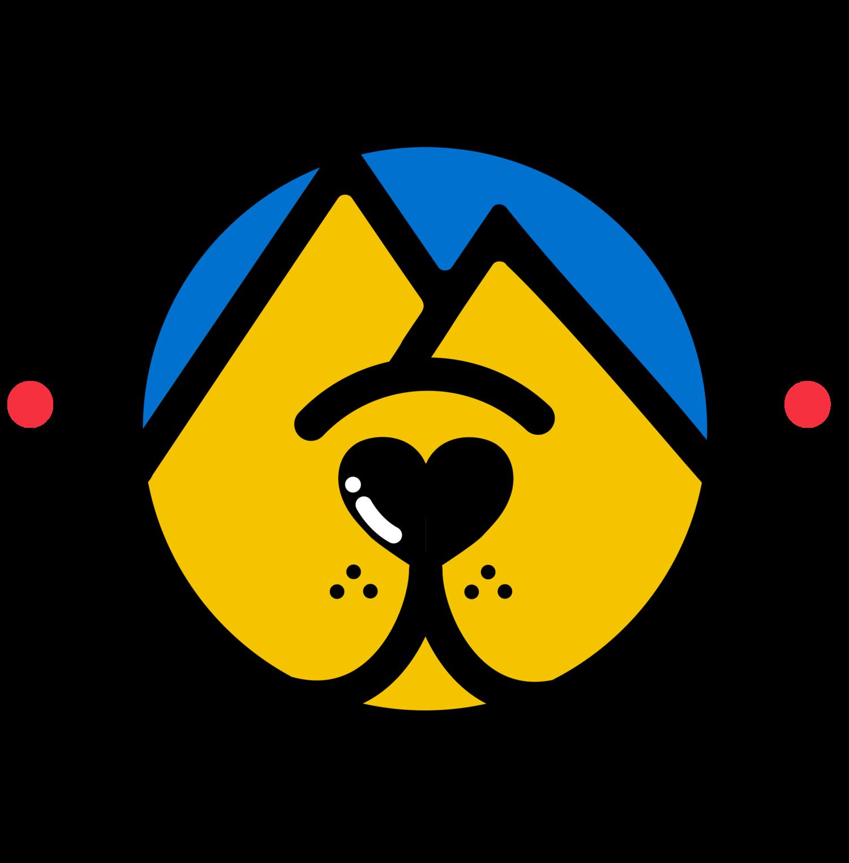 Asheville Animal Rescue organization.